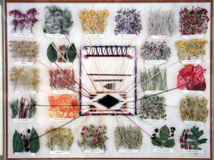 Натуральные красители для ковров ручной работы